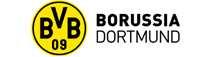 Borussia Dortmund GmbH & Co. KGaA|Aktie